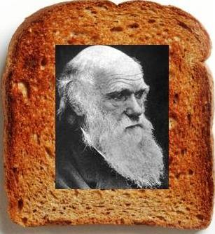 Darwin Day is coming!