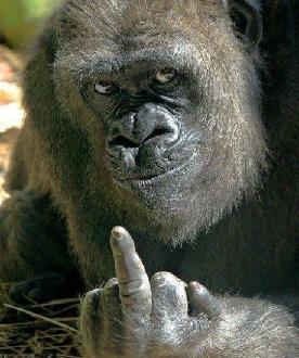 ape-finger